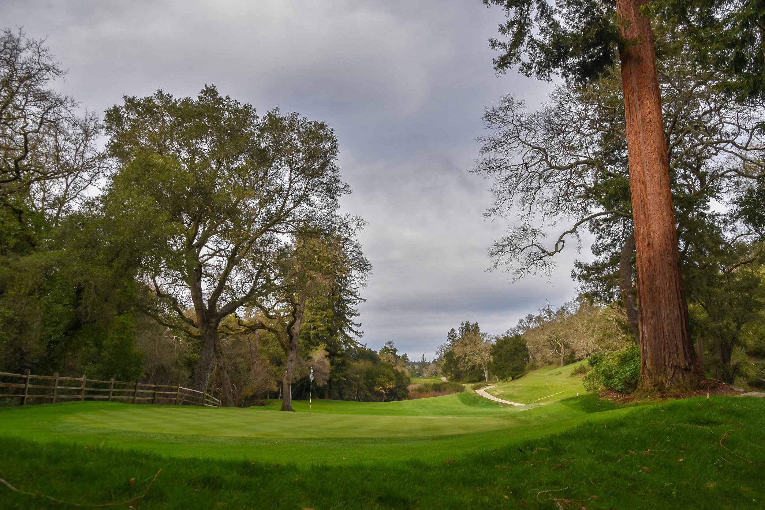 The view from behind the 10th green at Orinda Country Club