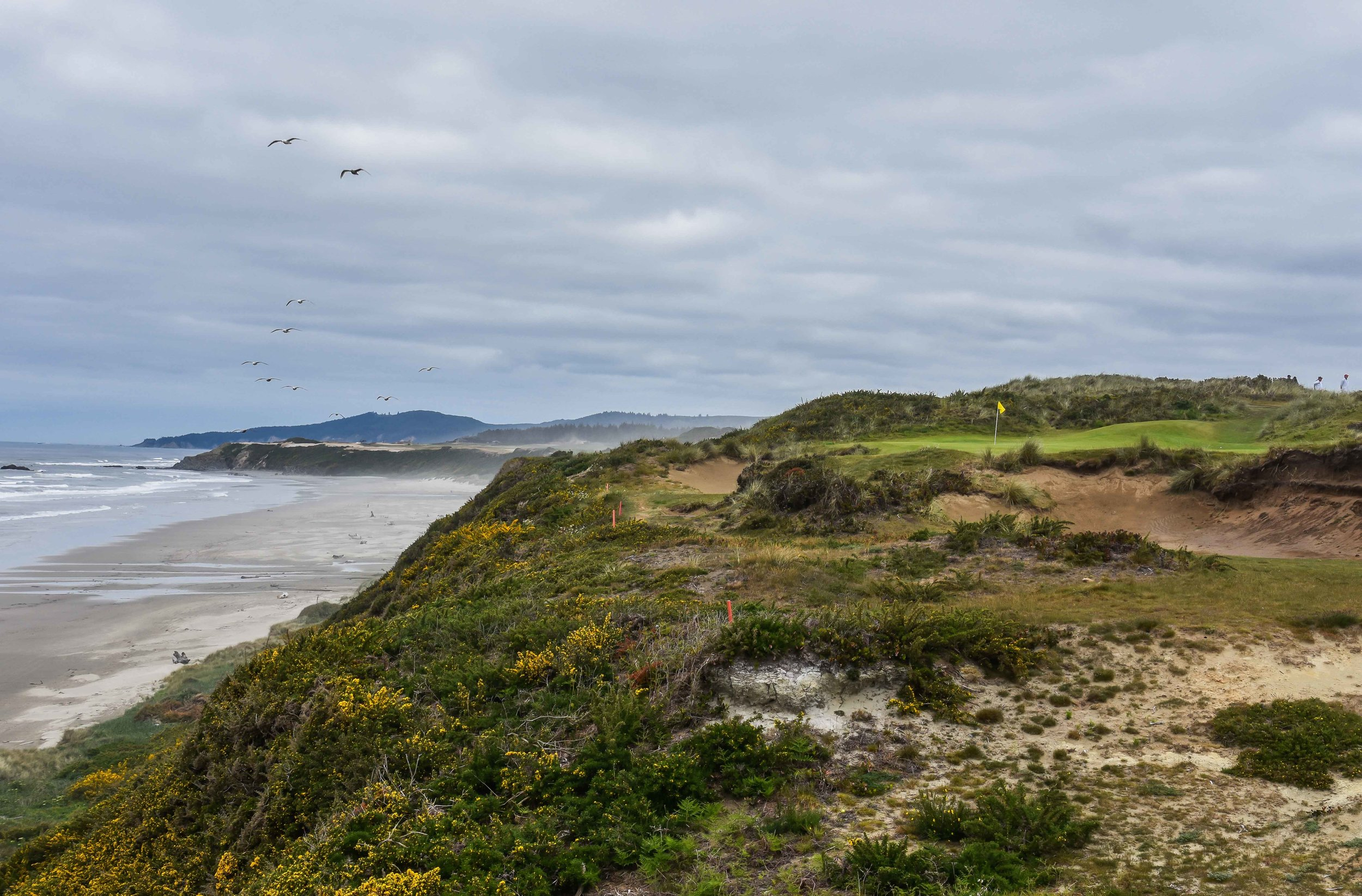 the 11th hole at Pacific Dunes is a popular selection for favorite golf hole at Bandon.