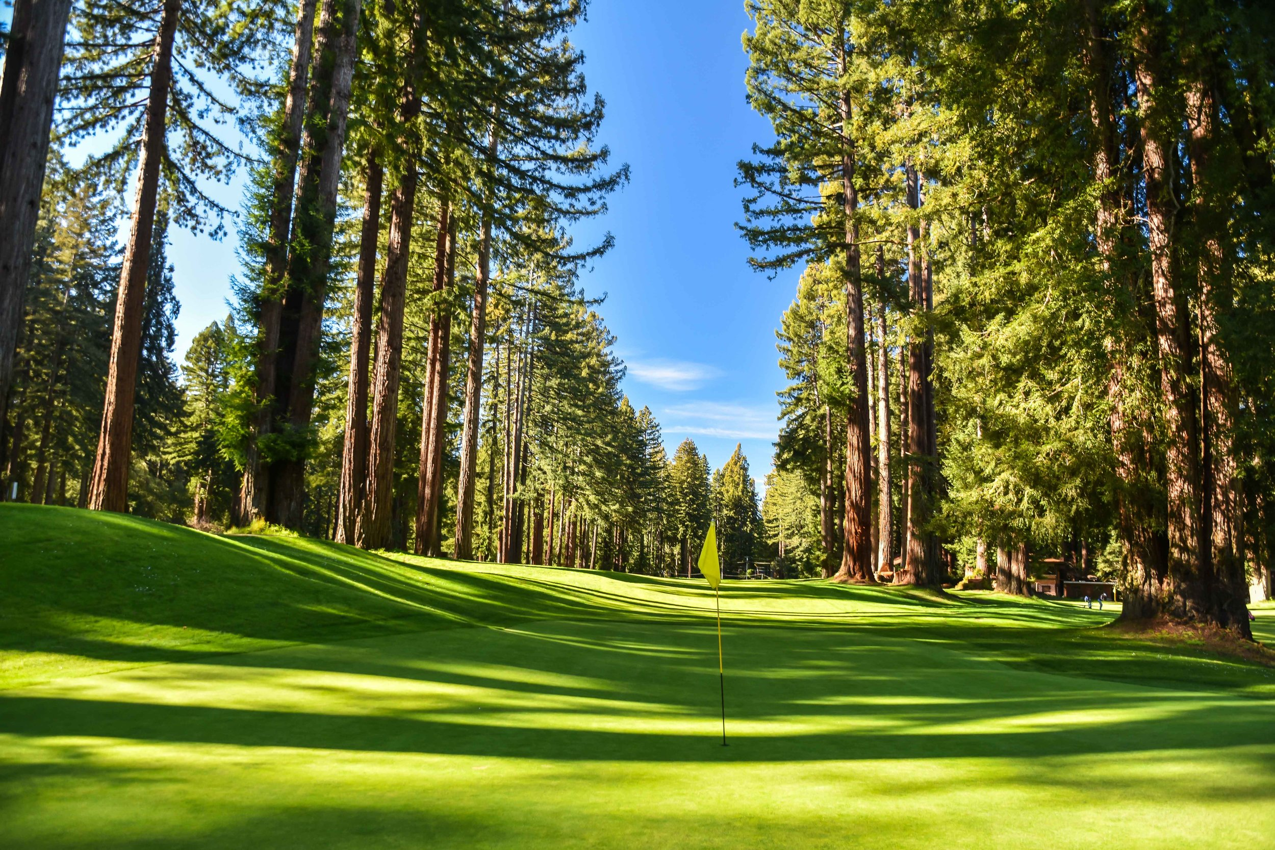 Alister Mackenzie's Northwood Golf Club in Monte Rio, CA