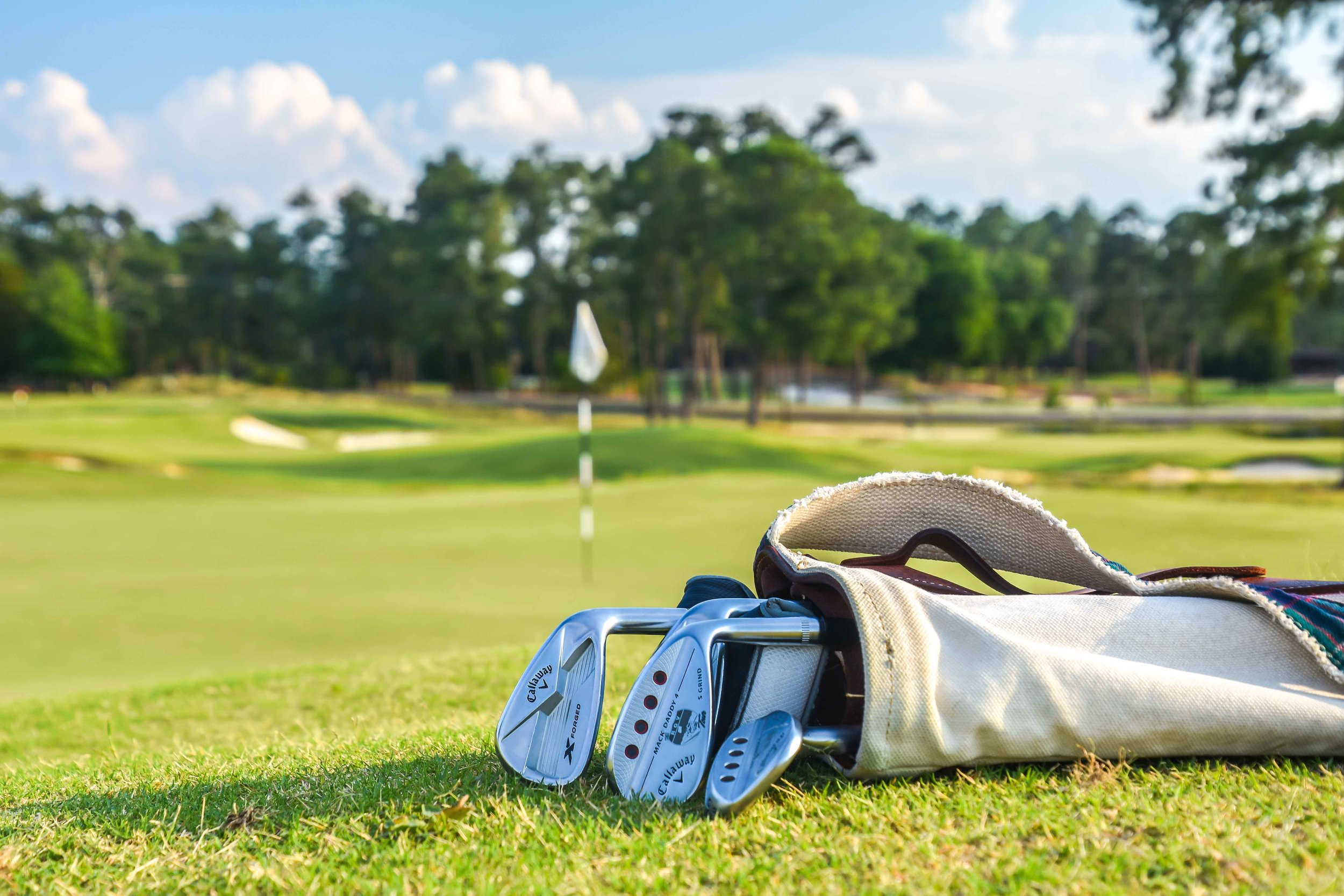 Pinehurst gives you a nice little carry bag to use for your round at The Cradle par 3 course.