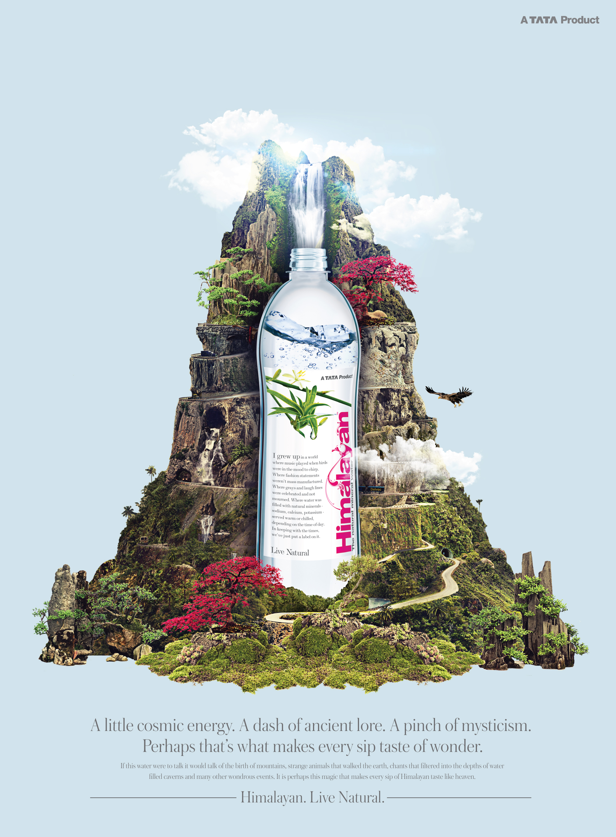 bottle ads-02.jpg