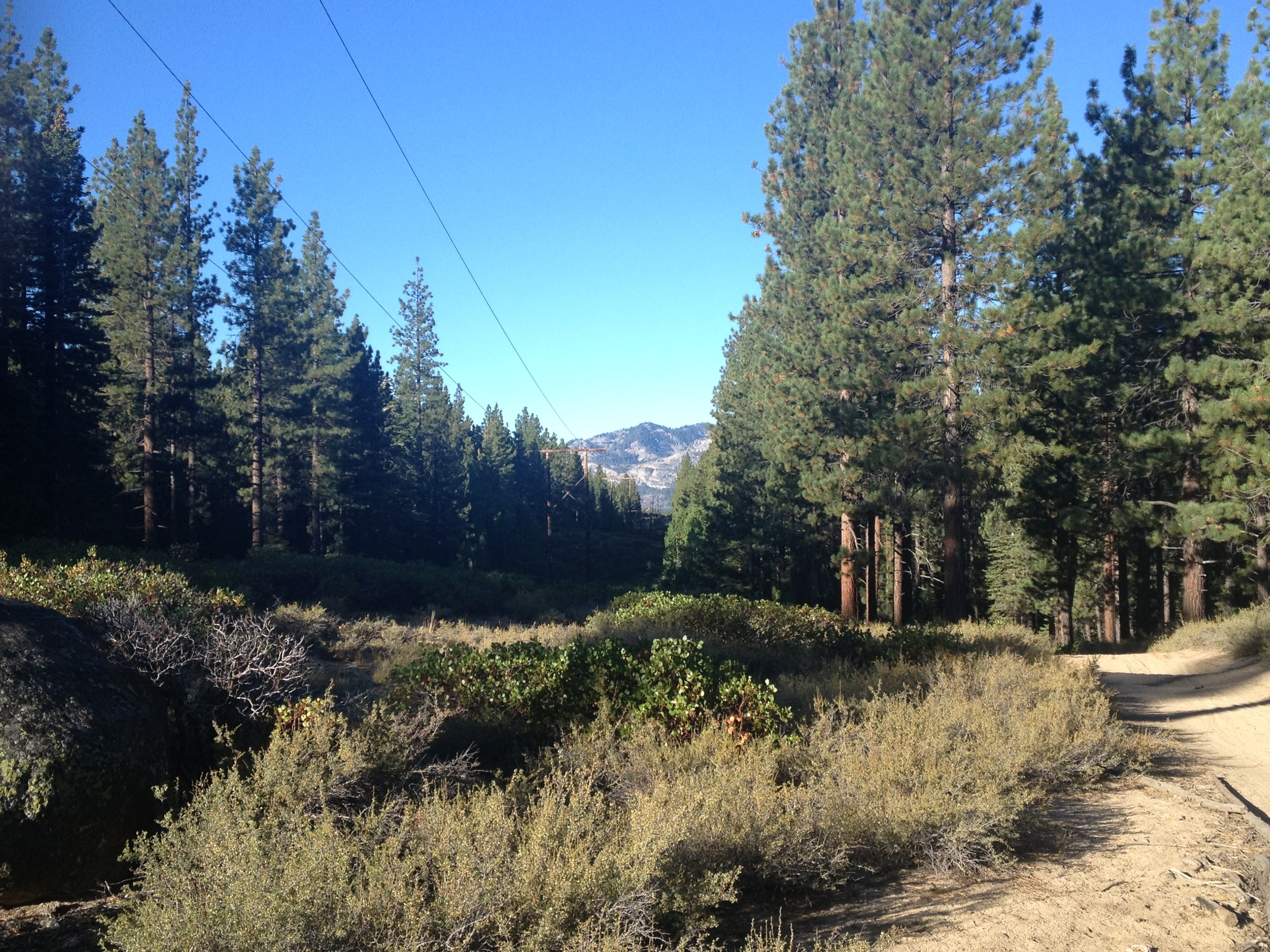 The Powerline Trail, near Lake Tahoe, California