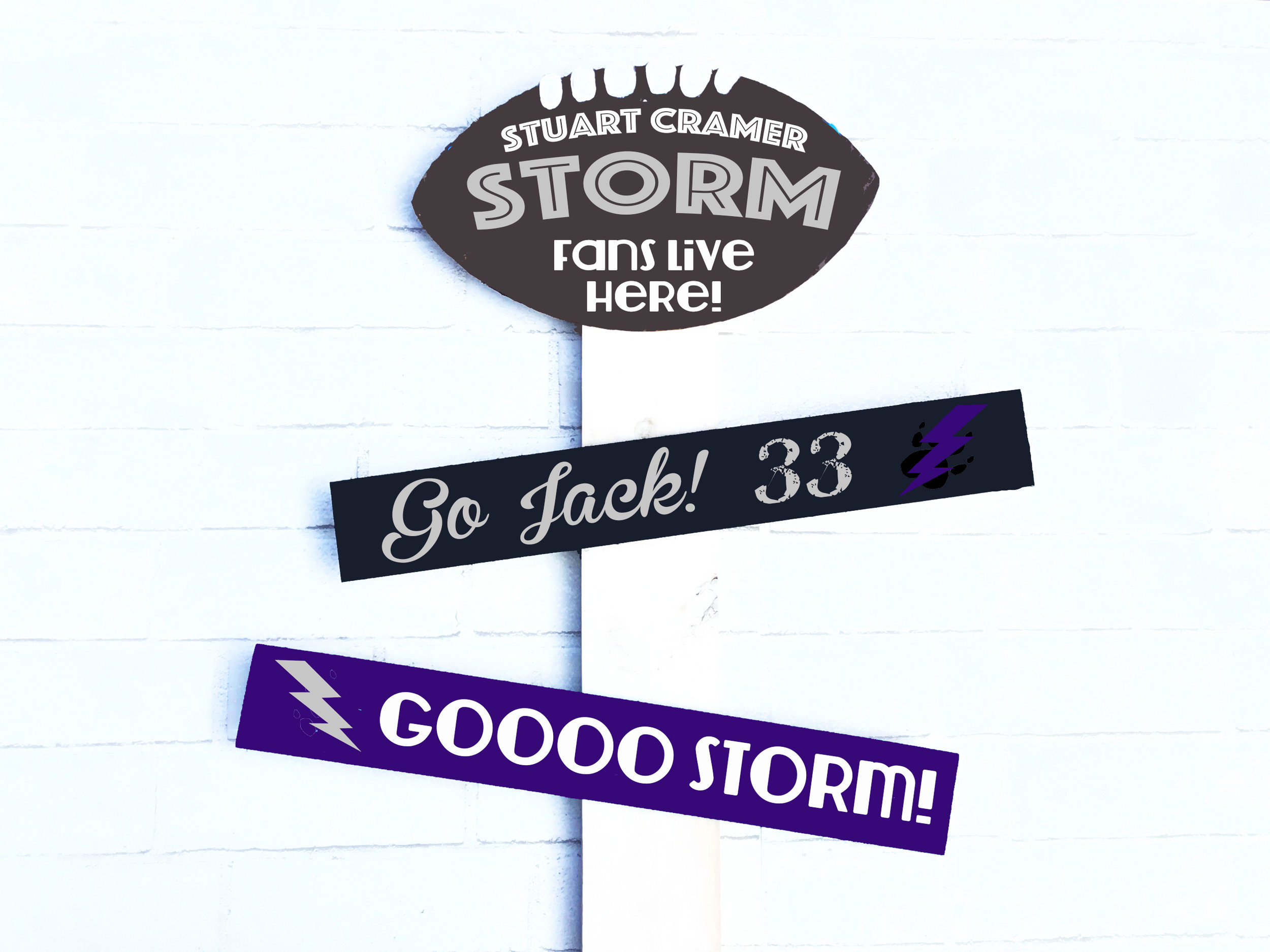 SC Storm Fans.jpg