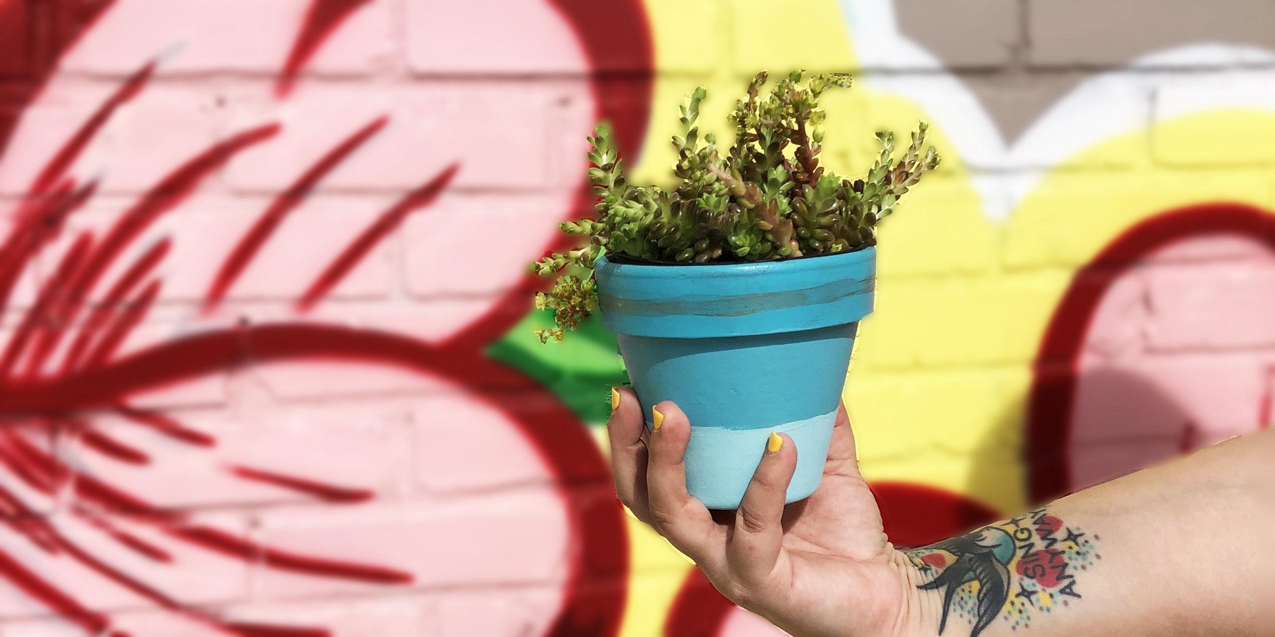 Paint & Plant Teal 1x2.jpg