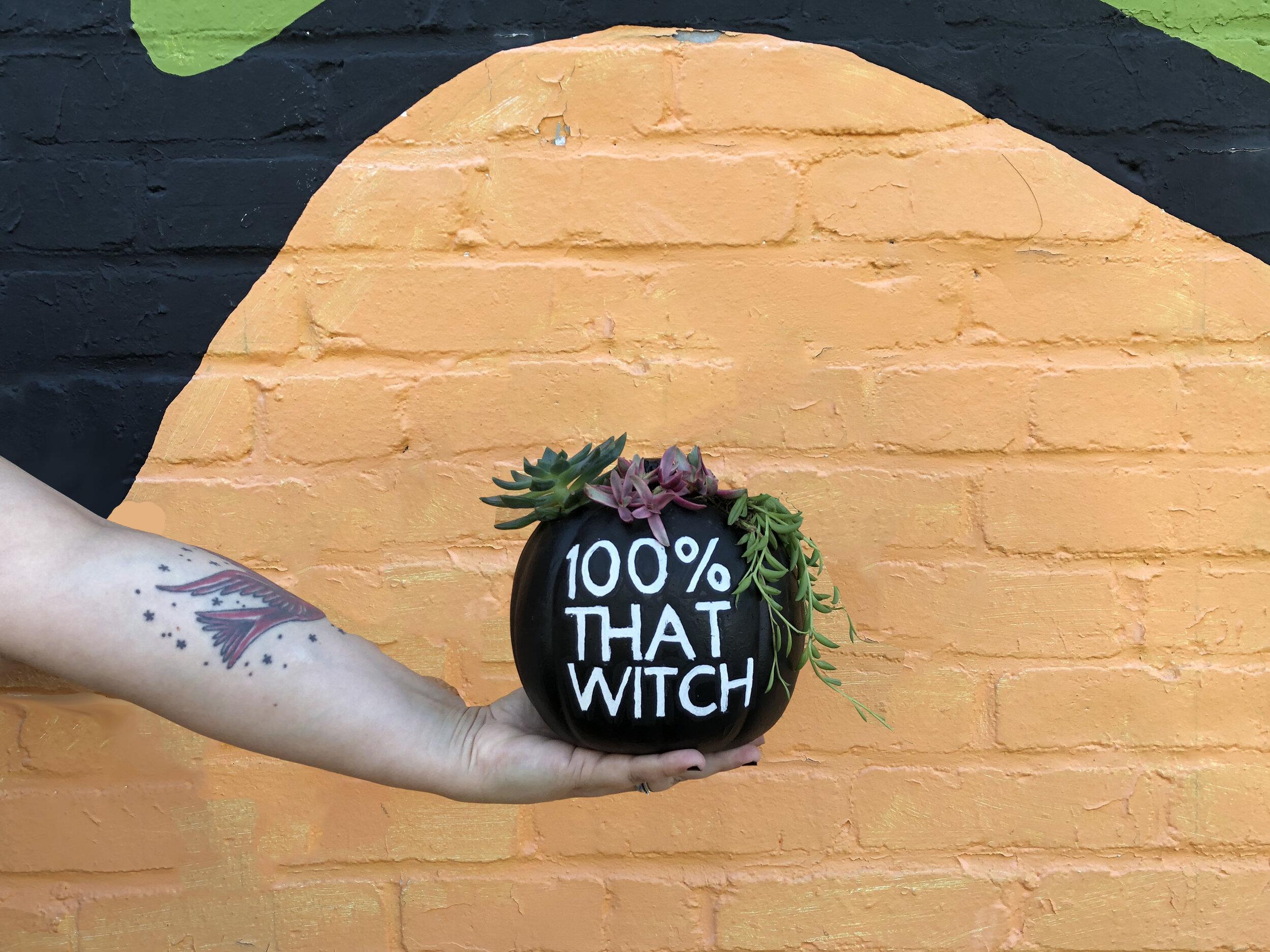 Sassy Pumpkin Mid 4x3.jpg