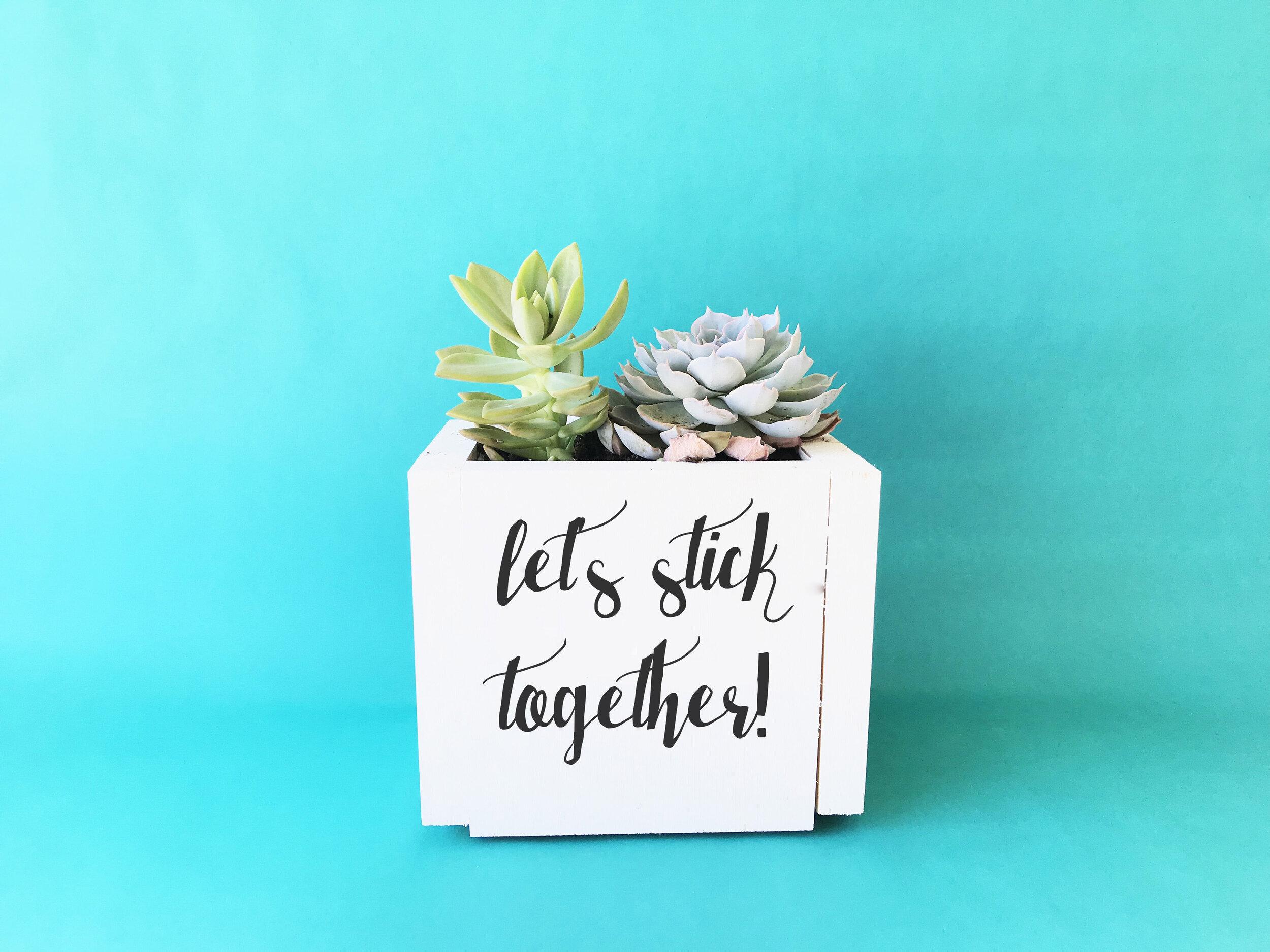 Stick Together Planter Box.jpg