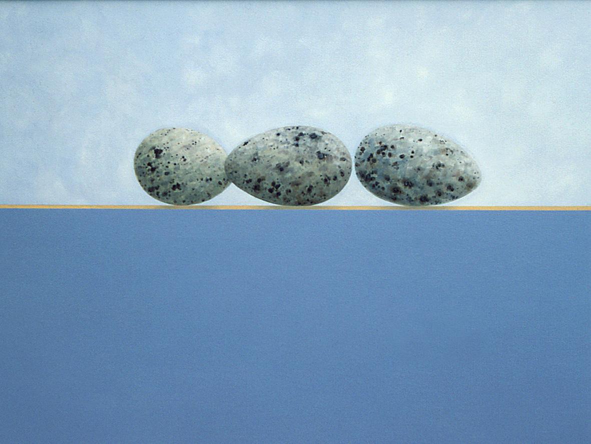 Skomer Eggs