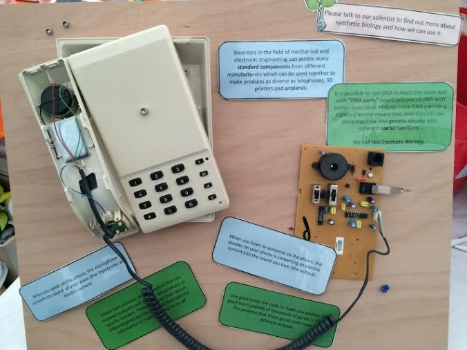 A disassembled (and retro) telephone, showing simple components forming a complex system
