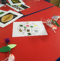 Build a plant game, played with year 1/2 class