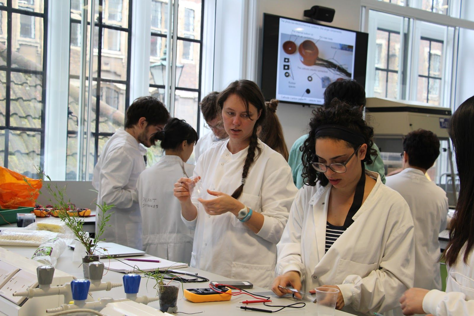 Report_-_Co-lab_OpenPlant-035.jpg