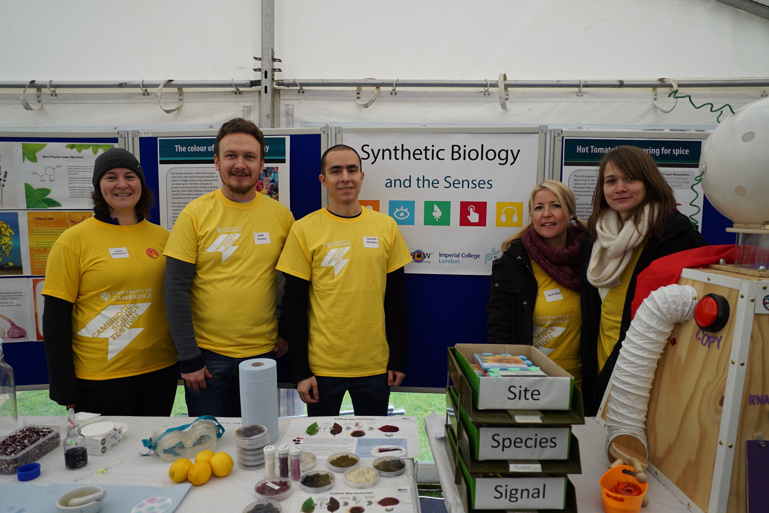 The morning shift: Some of the Cambridge Science Festival 2018 team ready for doors open.