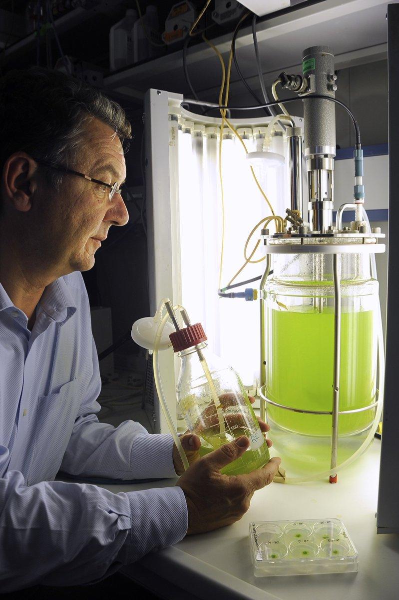 Prof. Ralf Reski with his moss bioreactors