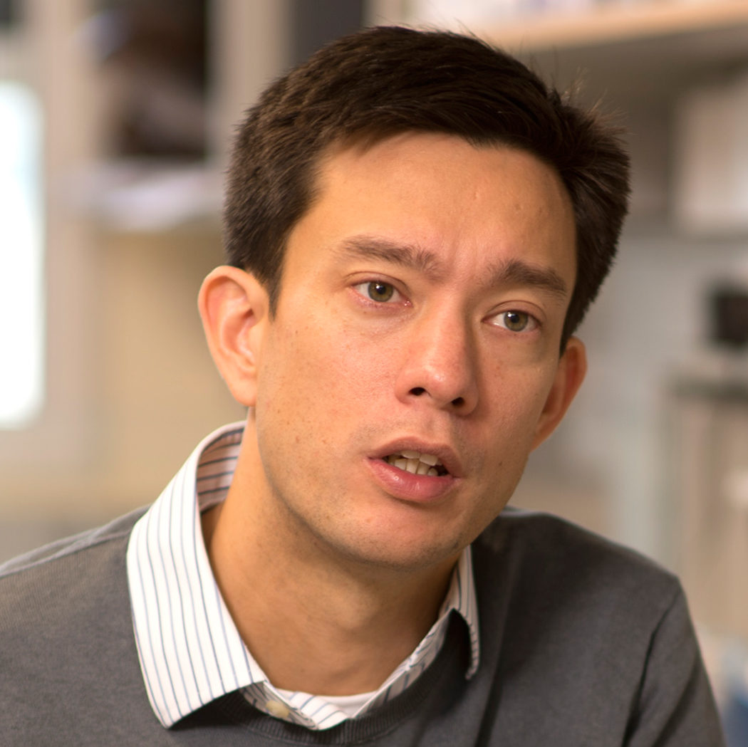 Jason Chin - Head, Centre for Chemical & Synthetic BiologyProgramme Leader, Division of Protein & Nucleic Acid Chemistry, MRC Laboratory of Molecular Biology
