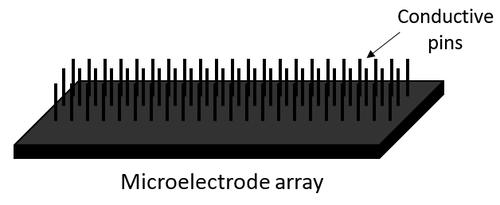 mircoelectrode array.png