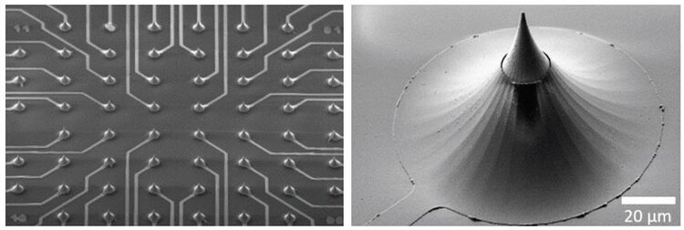 The 3D micro-electrode array from Multi Channel SystemsTM