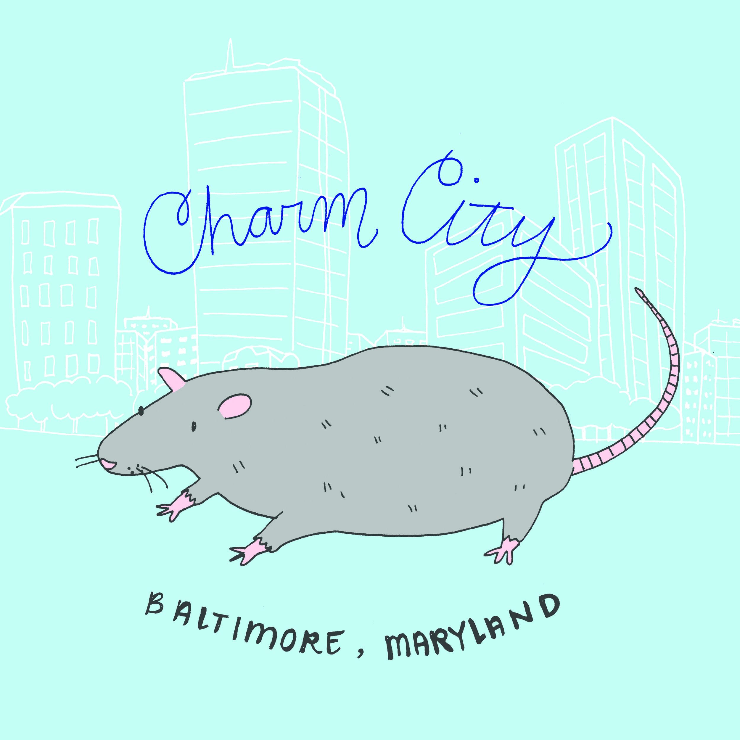 Baltimore Rat for  Caravanserai