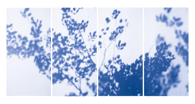 Blue Line of Woods #997, 2012
