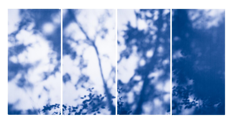 Blue Line of Woods #981, 2012