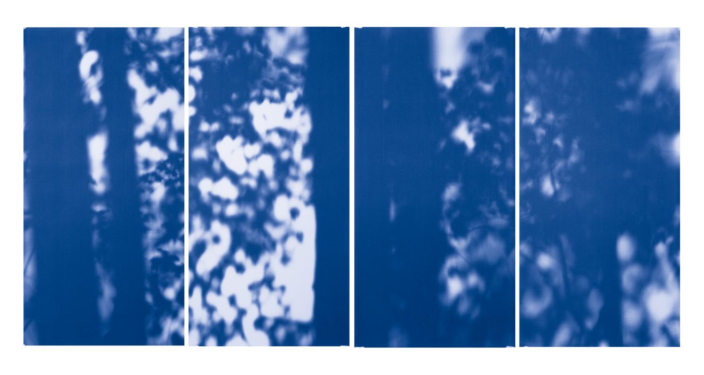 Blue Line of Woods #770, 2012