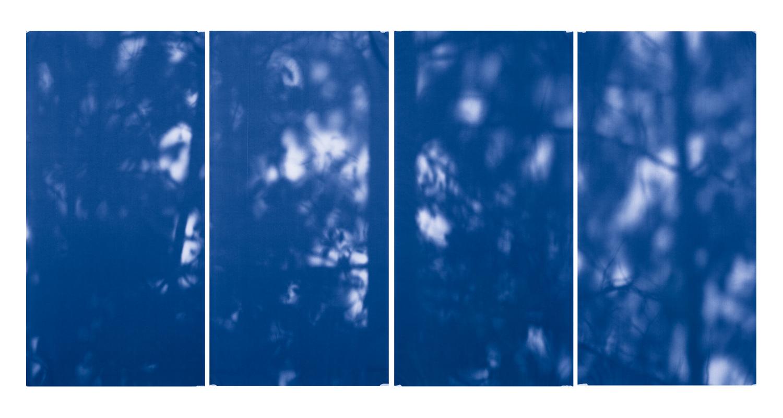 Blue Line of Woods #883, 2012