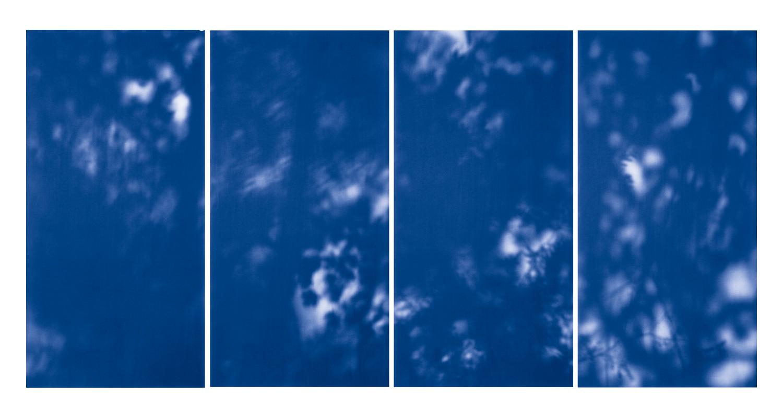 Blue Line of Woods #1118, 2012