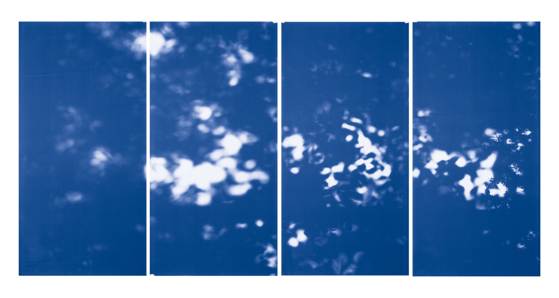 Blue Line of Woods #1146, 2012
