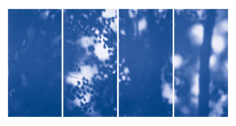 Blue Line of Woods #1102, 2012