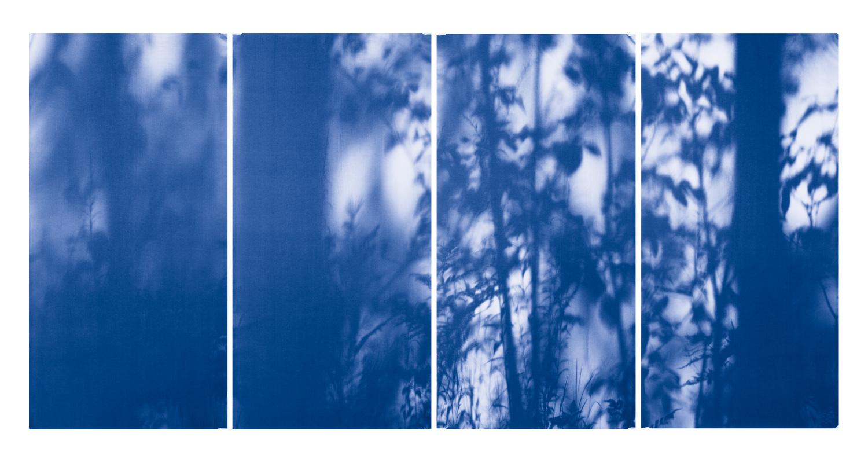 Blue Line of Woods #969, 2012