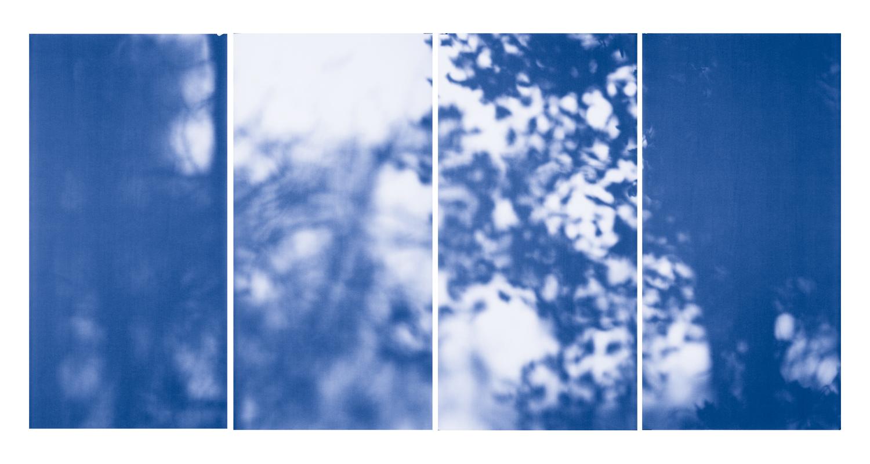 Blue Line of Woods #1126, 2012