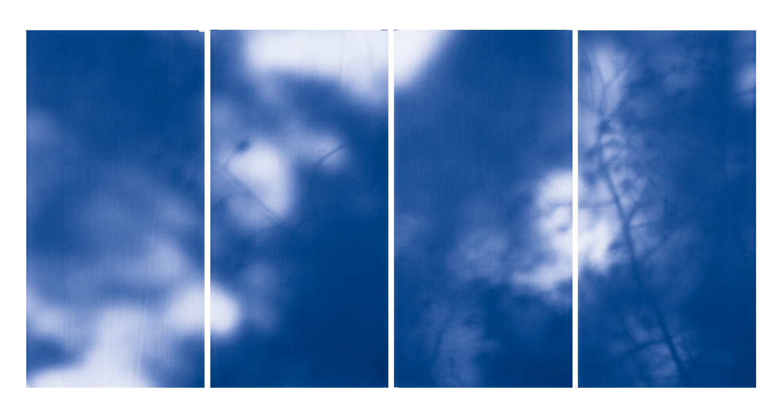 Blue Line of Woods #1106, 2012