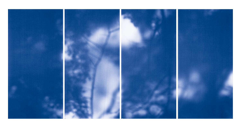 Blue Line of Woods #1114, 2012