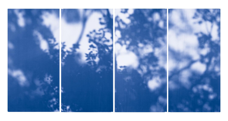 Blue Line of Woods #1005, 2012