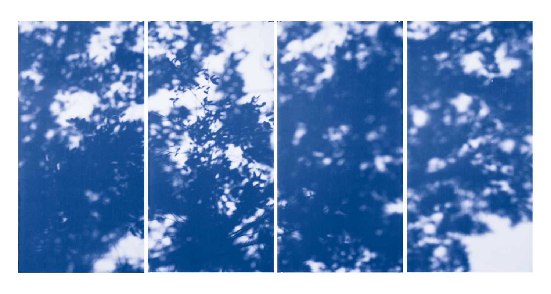 Blue Line of Woods #1150, 2012