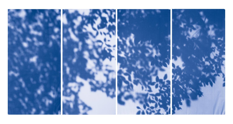 Blue Line of Woods #1001, 2012