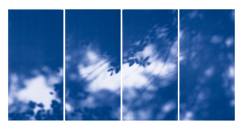 Blue Line of Woods #1110, 2012