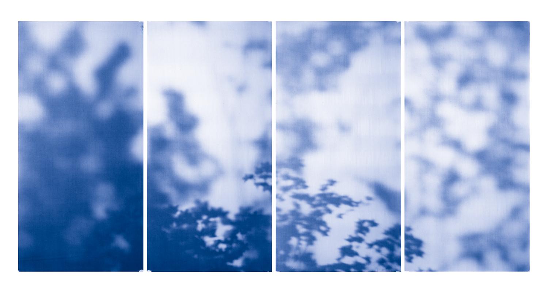 Blue Line of Woods #989, 2012