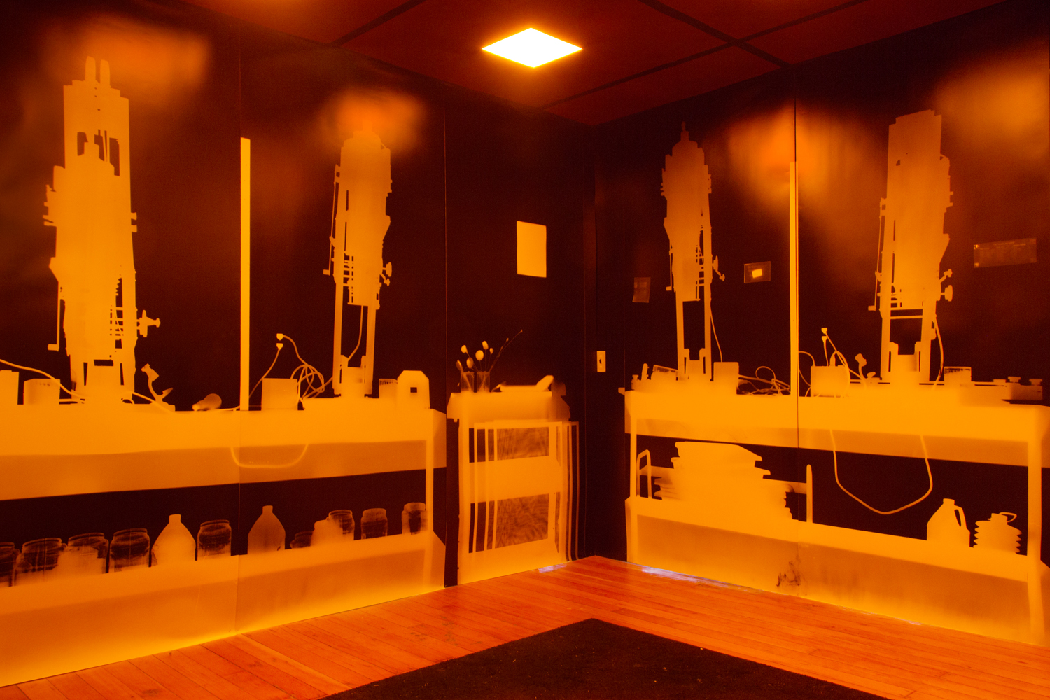 This Darkroom's Gone to Heaven (SF), 2012