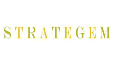 strategem_edited-.jpg
