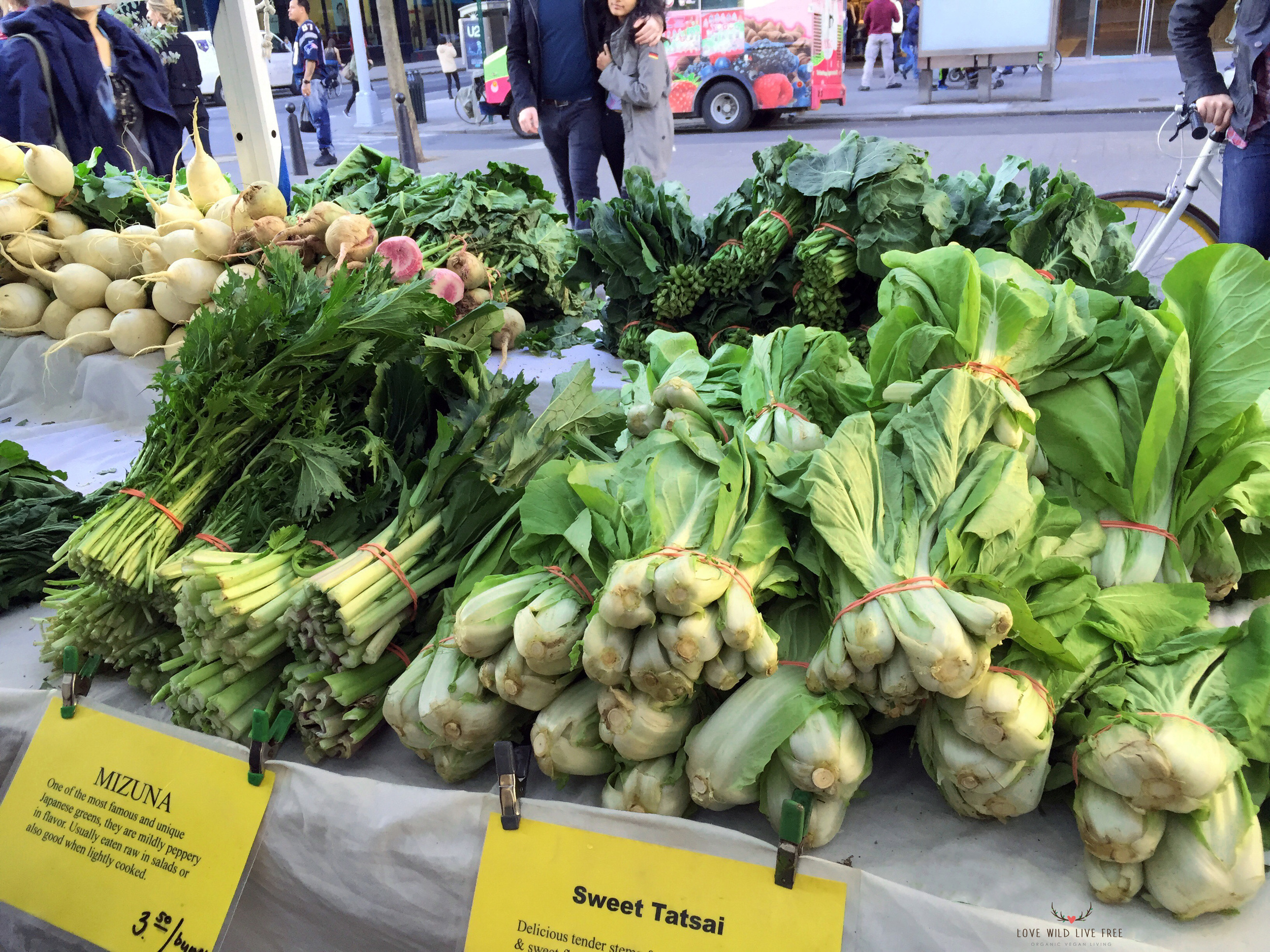 Fresh organic greens from Lani's Farm at GrowNYC's Greenmarket in Union Square. Photo by   Love Wild Live Free.