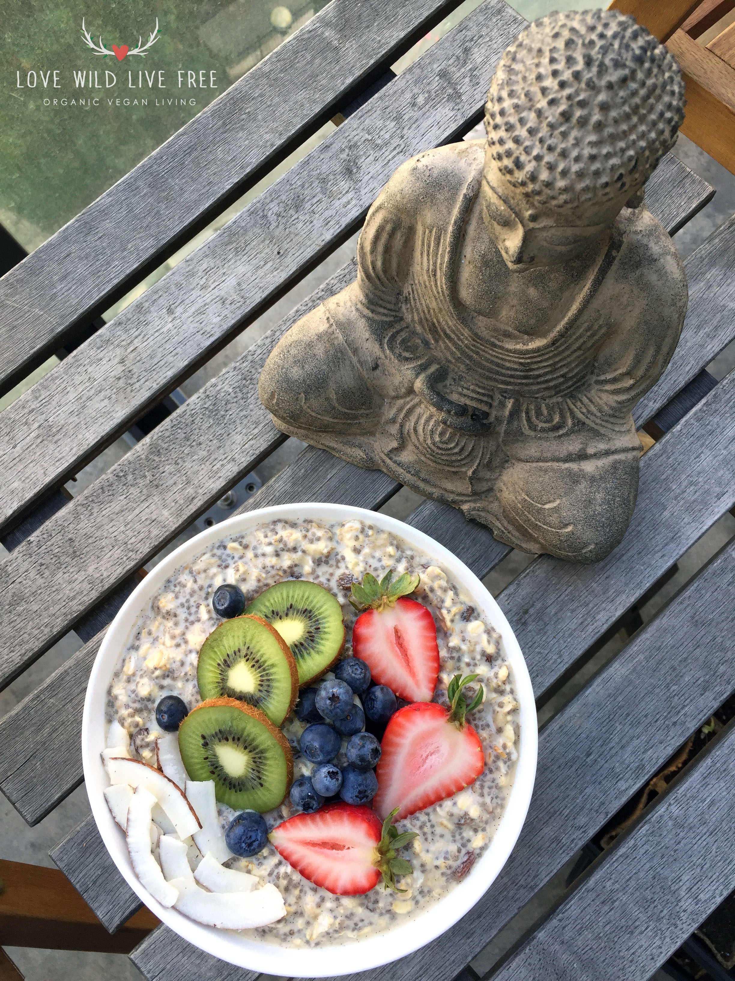 I enjoyed these Vanilla-Cinnamon Overnight Oats out in the sunshine, on in my patio garden.  Photo by Love Wild Live Free.