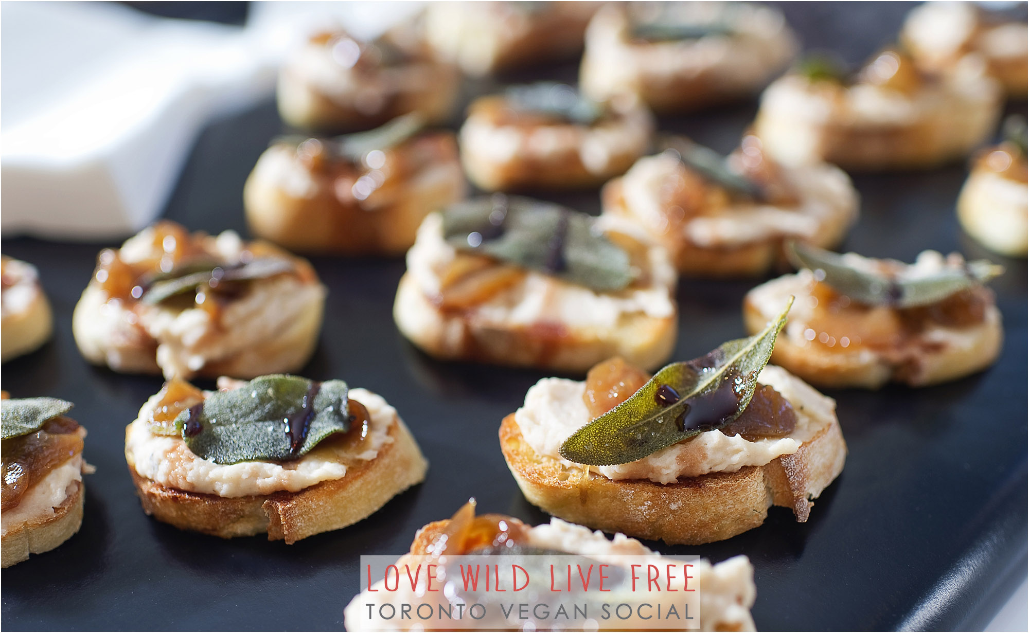 Cured by Plants (caramelized onion and white bean crostini)