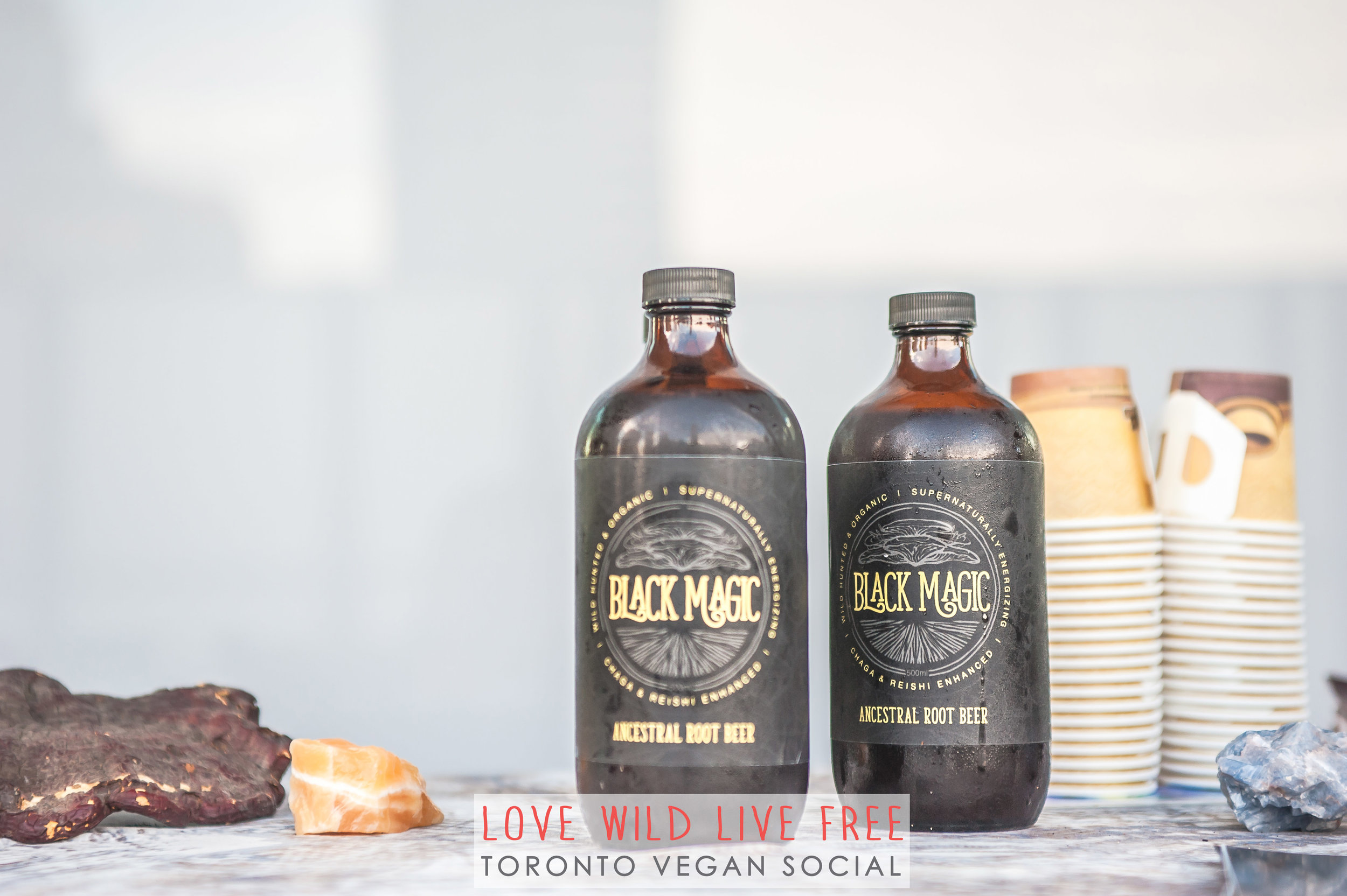 Black Magic Alchem y's Artisanal Root Beer was a huge hit at the Love Wild Live Free Vegan Social.Photo by:  LOF Photography .