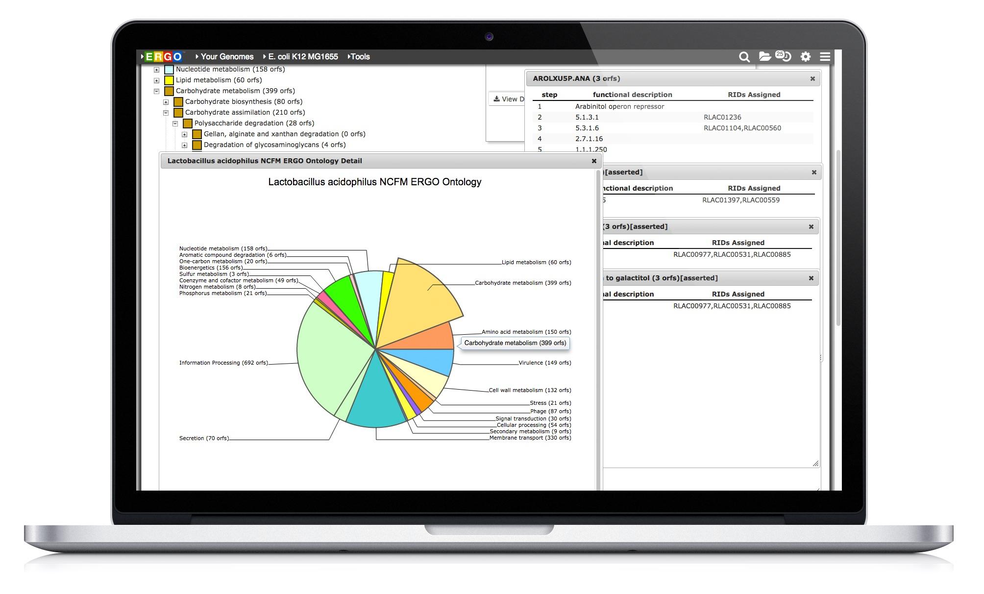 Whole Genome Annotation Platform