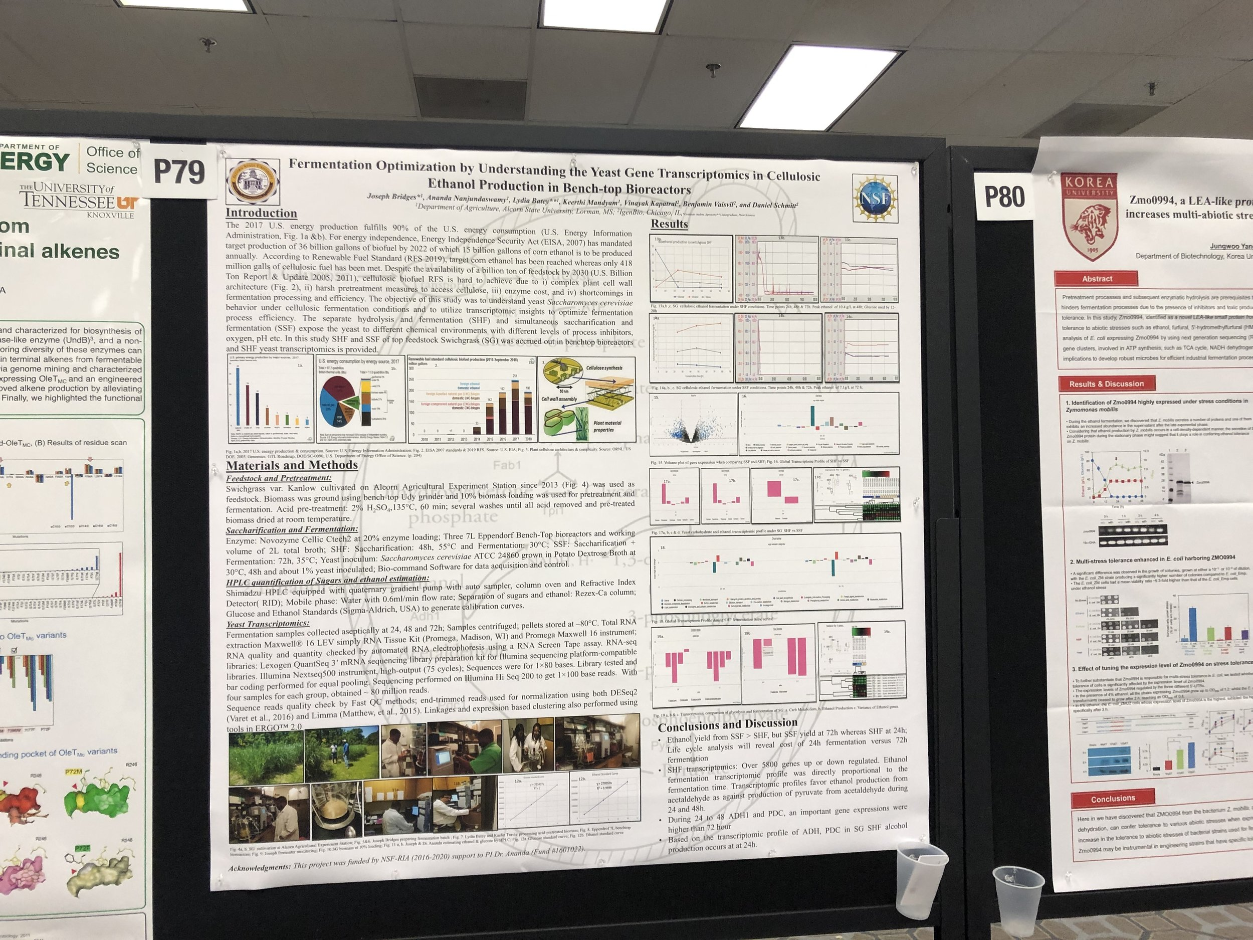 SIMB 2019 - Poster presentation