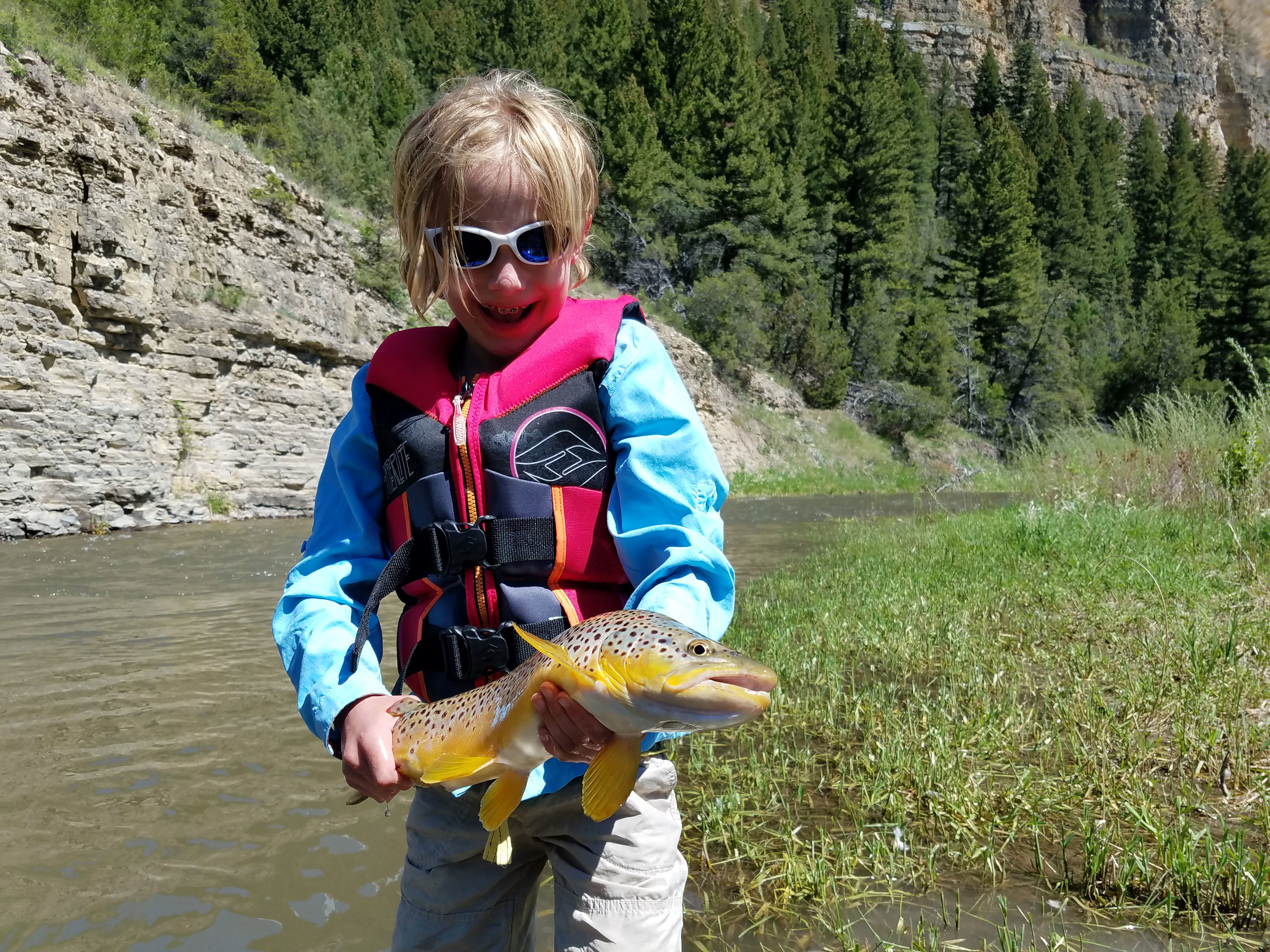 Fly-Fishing-Brown-Trout-Smith-River-Montana.jpeg