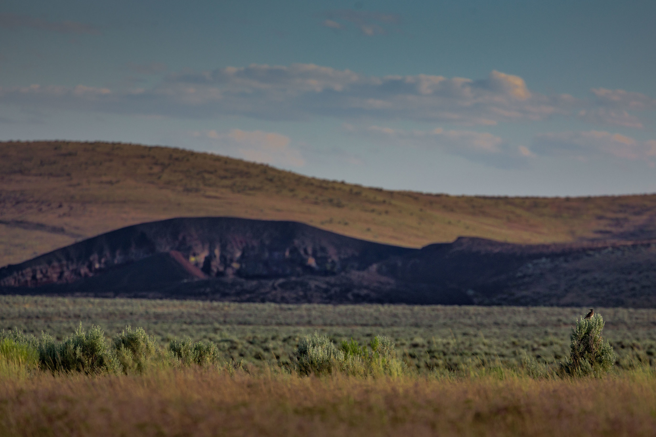 bird_crater_from_afar_MG_7828-1-copy.jpg