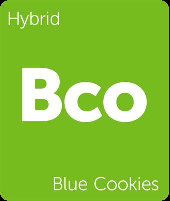 blueberrycookies.png