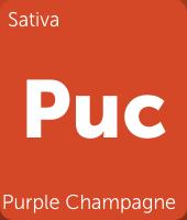 Screenshot-2018-2-15 Purple Champagne Cannabis Strain Information.png