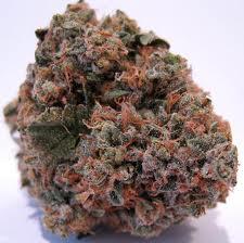 mars kush marijuana seeds.jpg