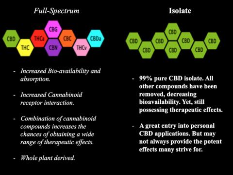 full-spectrum-cbd-vs-cbd-isolate-which-is-better.png